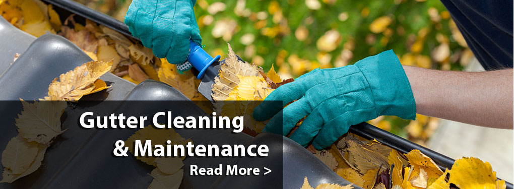 Gutter Cleaning and Maintenance in Seattle