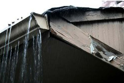 Gutter Repair Bellevue